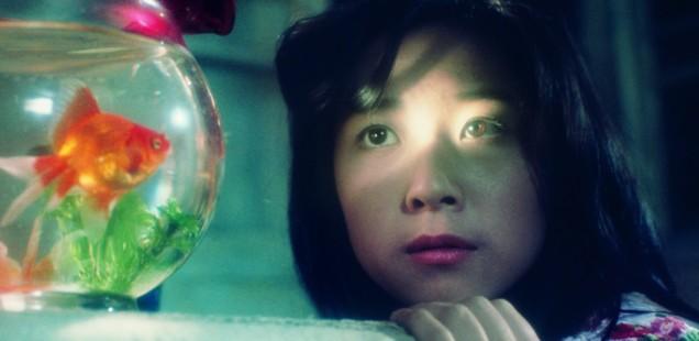 "Kumiko Oba, playing ""Fantasy"" in House"