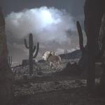 Donkeys in Cinema (1): 3 Fordian Donkeys