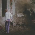 Donkeys in Cinema (2): Poe, Fellini, Stamp and a Donkey